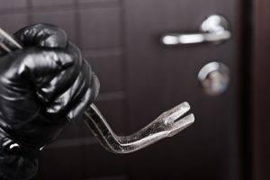 cleveland woman burglar